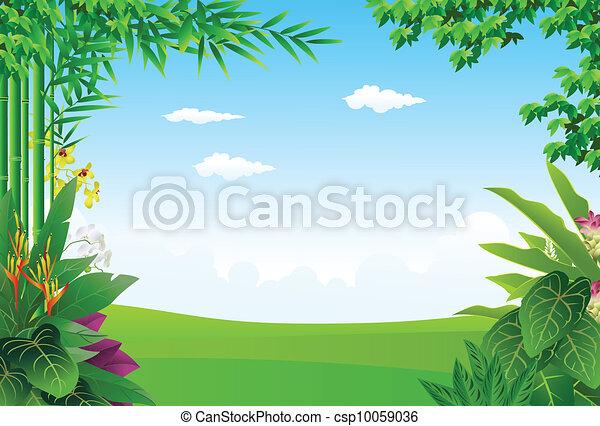 矢量-热带, 森林, 背景