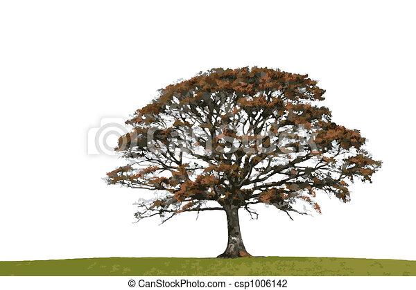 Abstract Autumn Oak - csp1006142