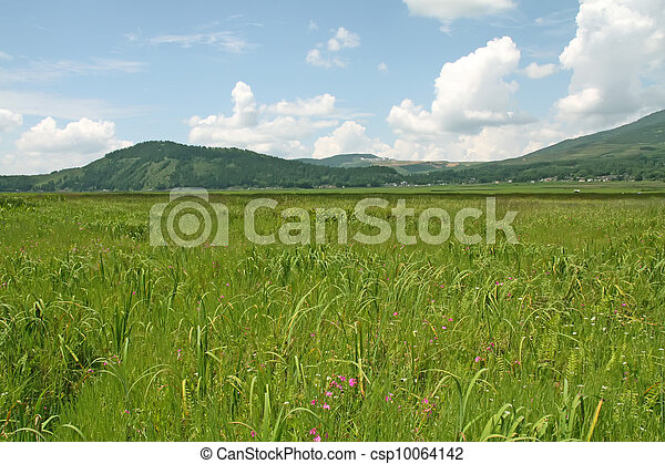 geological scenery, grasslands and hills - csp10064142