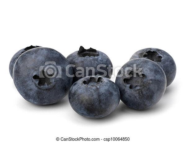 Bilberries or whortleberries cutout  - csp10064850