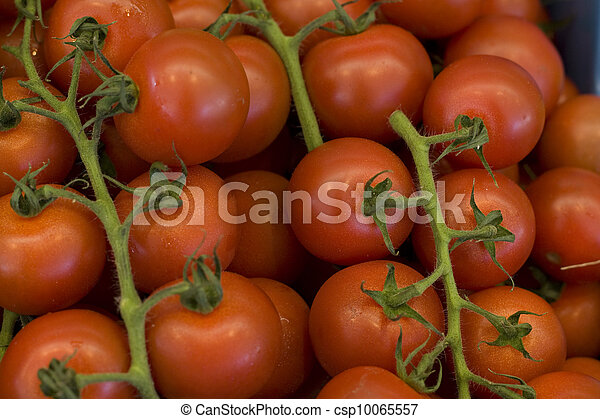 Truss tomatoes - csp10065557