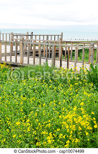 Wooden fence in the grassland - csp10074499
