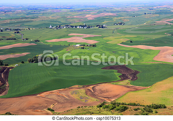 Rolling Hills of Palouse - csp10075313