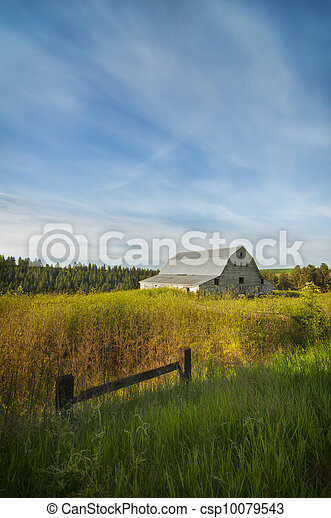White barn on the Palouse - csp10079543