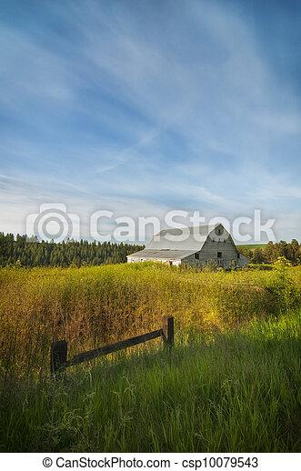 White barn on the Palouse - csp10079543