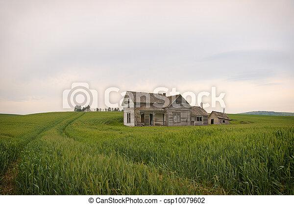 Abandoned Homestead Palouse - csp10079602