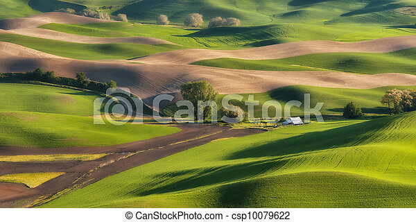 Rolling Hills of the Palouse - csp10079622