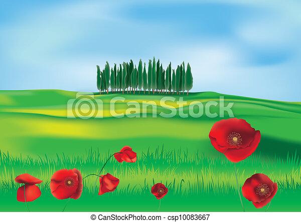 Tuscan countryside - csp10083667