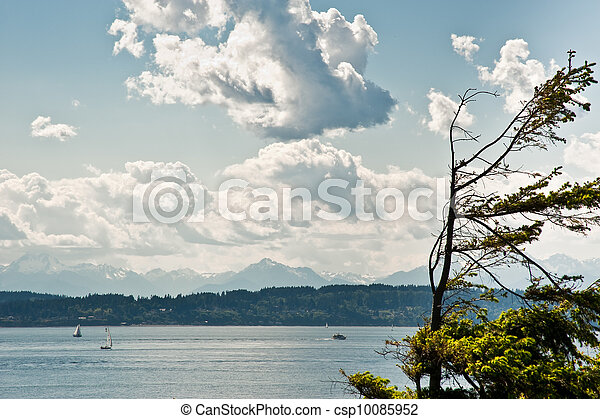 View from Discovery Park - csp10085952