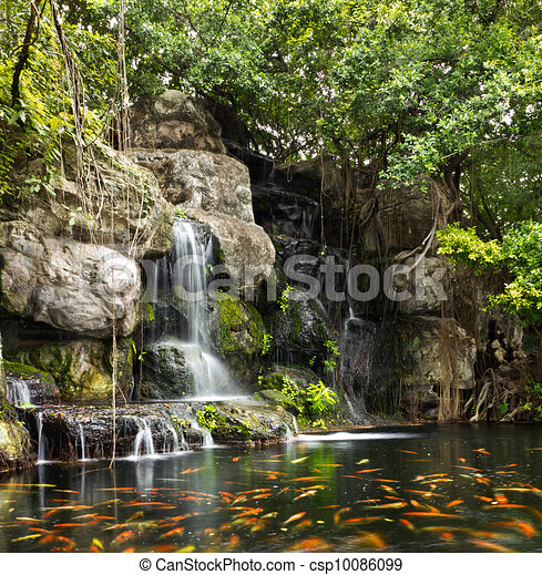 Koi fish in pond at the garden with a waterfall - csp10086099