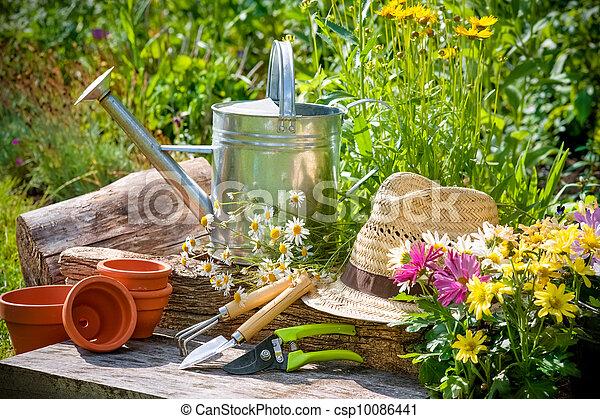 Gardening - csp10086441