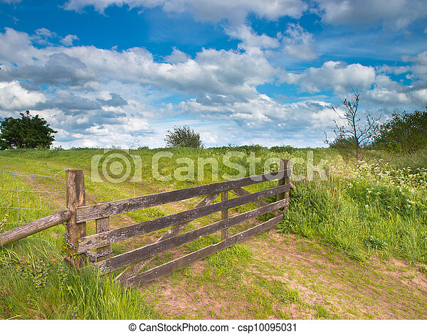 Fenced road in a summer landscape - csp10095031