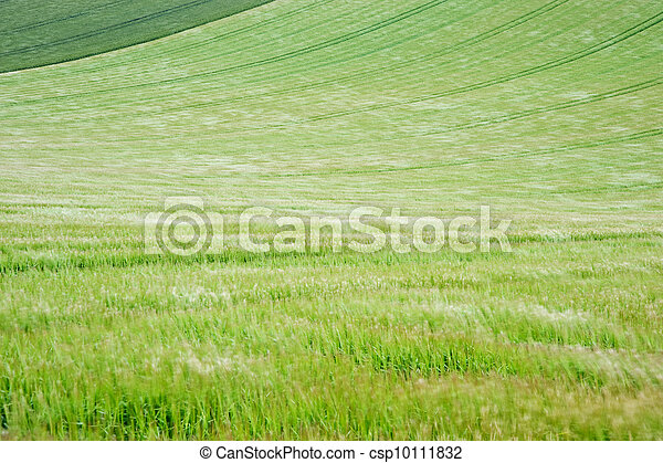 Landscape across agricultural fields on windy Summer day - csp10111832
