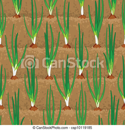 onion sprout vegetable patches in row seamless - csp10119185