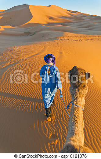 Berber walking with camel at Erg Chebbi, Morocco - csp10121076