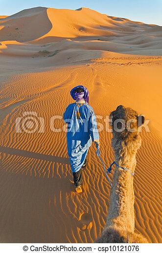 Berbère, marche, chameau, erg, Chebbi, maroc - csp10121076