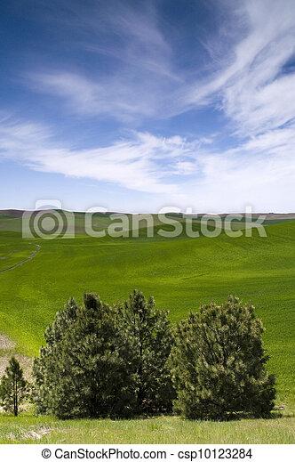 Farmland - csp10123284