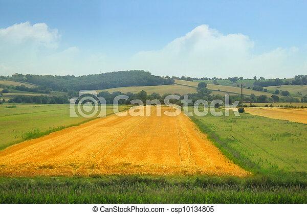 Rural landscape - csp10134805