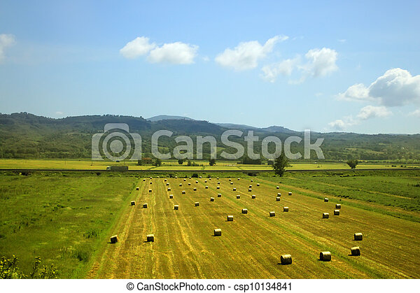 Rural landscape - csp10134841
