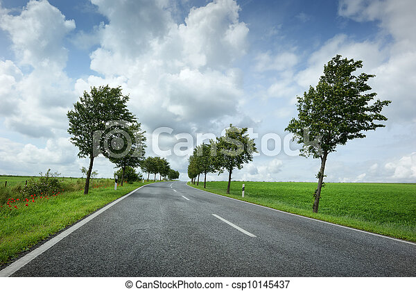 Road with cloudy sky - csp10145437