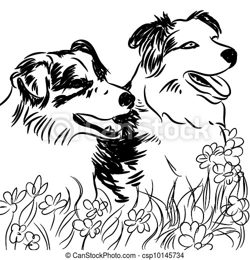 Vectors of two border collie dogs in flower field an for Border collie coloring pages