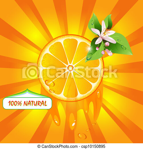 Background with orange slice - csp10150895