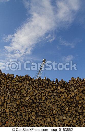 Lumber - csp10153652