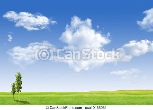 Beautiful landscape with tree, grass green field and blue sky - csp10158051