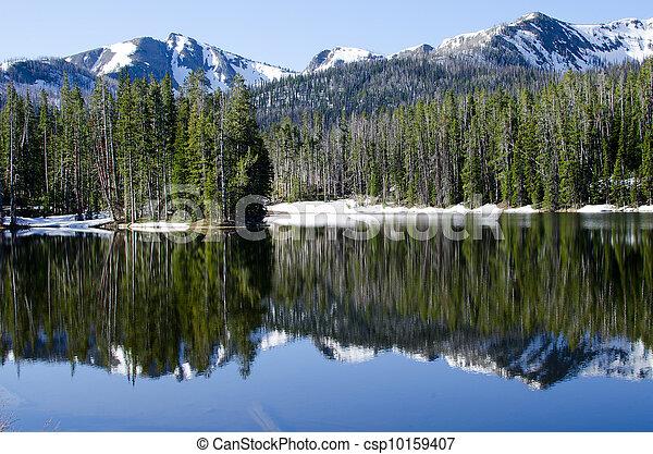 Sylvan Lake, Yellowstone National Park, Wyoming, USA - csp10159407