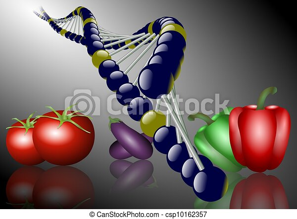 genetically modified food - csp10162357