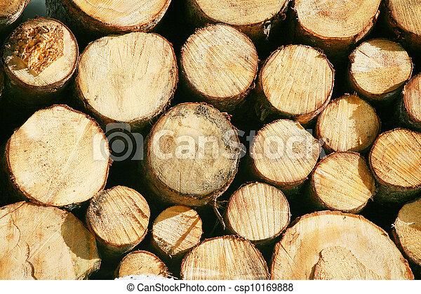 faisceau, court, regimber, bois, Bois construction - csp10169888