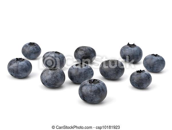 Bilberries or whortleberries cutout - csp10181923
