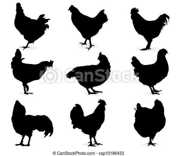 Vecteurs de poules silhouette de poules csp10186433 recherchez des images graphiques - Poules dessin ...