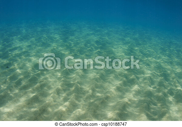 Light Dappled Sandy Bottom at a shallow water beach. - csp10188747