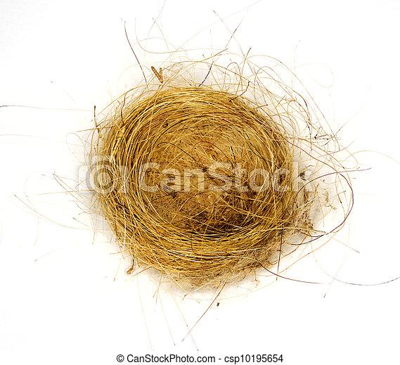 ninho, isolado, cabelo, capim, tecido, Pássaros - csp10195654