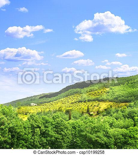 Typical Italian landscape - csp10199258