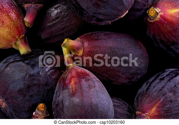 Black Mission Figs (Ficus carica) - csp10203160
