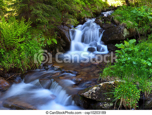 Mountain stream in the woods at spring - csp10203189