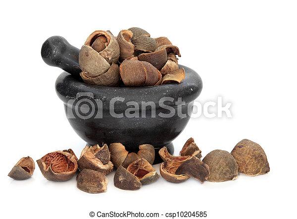 Areca Peel Herb - csp10204585