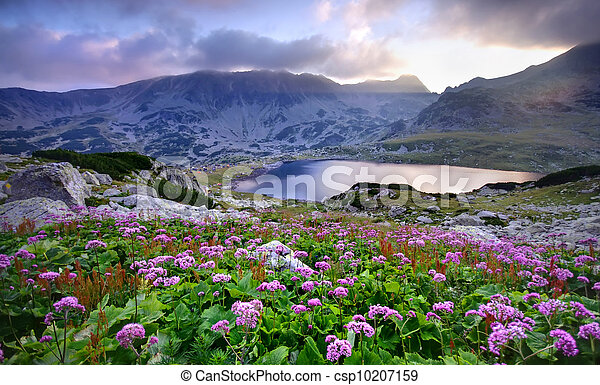 lake on mountain and flowers - csp10207159