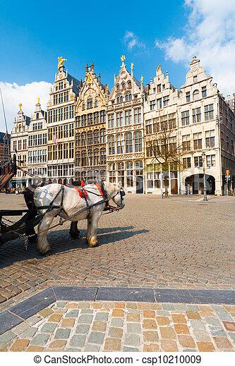 Antwerp GuildHouses  Horses Daytime V - csp10210009