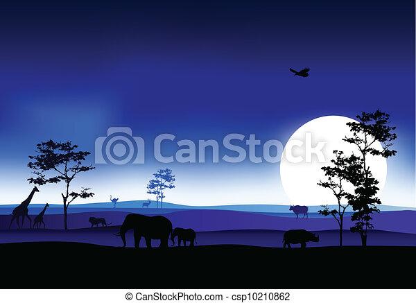 silhouettte of animal wildlife - csp10210862