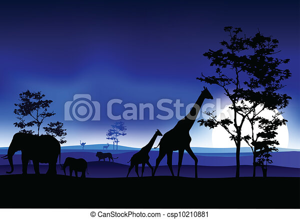 silhouettte of animal wildlife - csp10210881