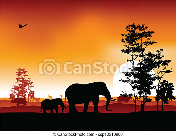 silhouettte of animal wildlife - csp10210900