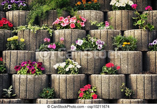 image de pierre parterre fleurs mur mur fait pierre. Black Bedroom Furniture Sets. Home Design Ideas