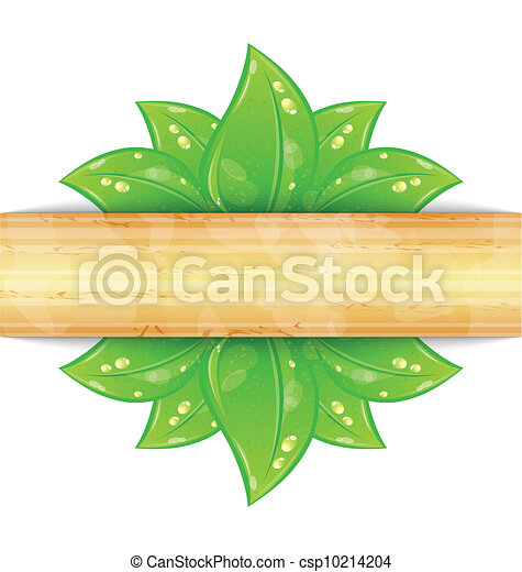 Eco friendly background with green leaves, wooden texture - csp10214204