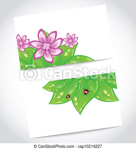 Set of eco friendly cards with green leaves - csp10214227
