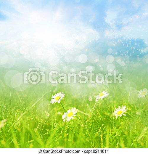 Spring or summer abstract background with bokeh - csp10214811