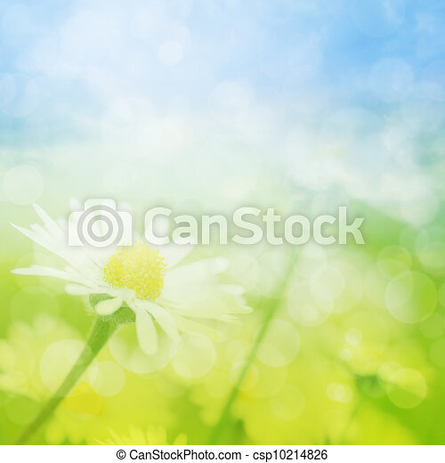 Spring or summer abstract background with bokeh - csp10214826