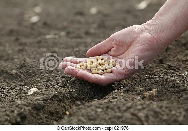 Agriculture - csp10219761